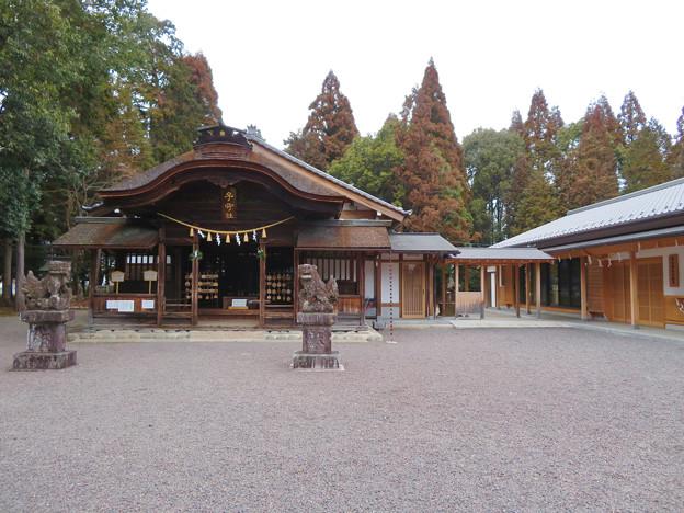 子守神社 - 13:本殿と社務所