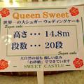 Photos: お菓子の城 No - 22:世界一の大シュガーウェディングケーキ