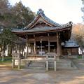 Photos: 鳴海杻(なるみてがし)神社 - 18
