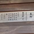 Photos: 鳴海杻(なるみてがし)神社 - 21