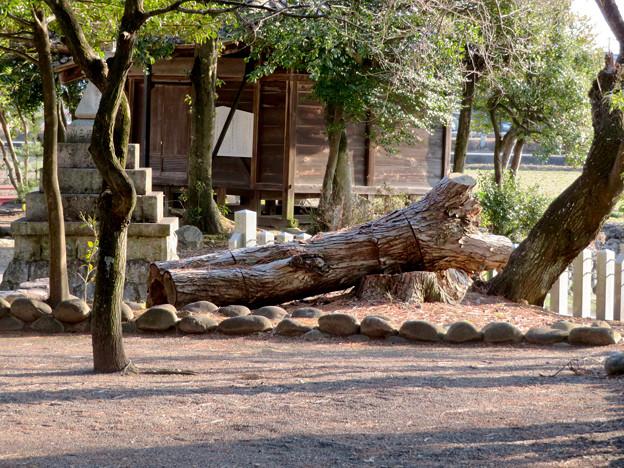 鳴海杻(なるみてがし)神社 - 30