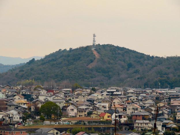 円福寺の展望台から見た高座山の頂上部 - 1