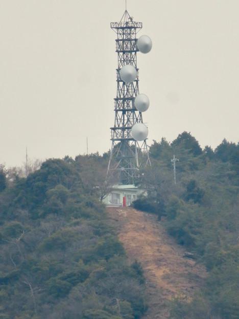 円福寺の展望台から見た高座山の頂上部 - 5