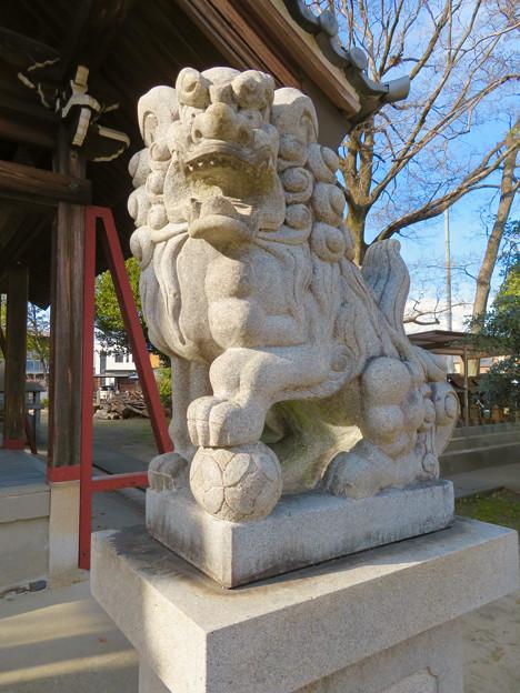 守山区下志段味にある八幡神社 - 10:狛犬