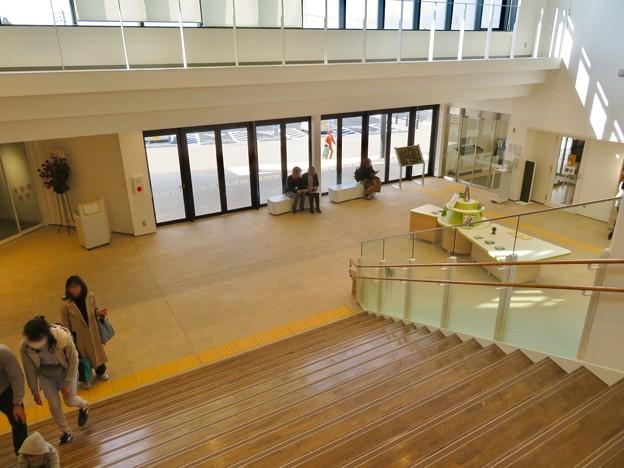 しだみ古墳群ミュージアム「SHIDAMU(しだみゅー)」No - 4:2階から見た1階エントランス