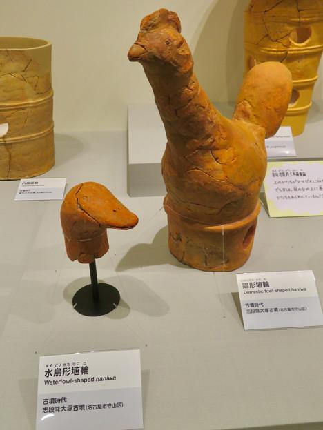 しだみ古墳群ミュージアム「SHIDAMU(しだみゅー)」展示室 No- 34:志段味大塚古墳から出土した水鳥と鶏形の埴輪