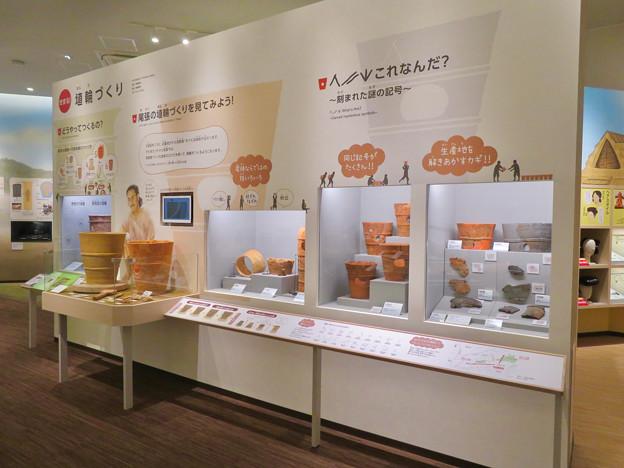しだみ古墳群ミュージアム「SHIDAMU(しだみゅー)」展示室 No- 48:埴輪づくりの解説
