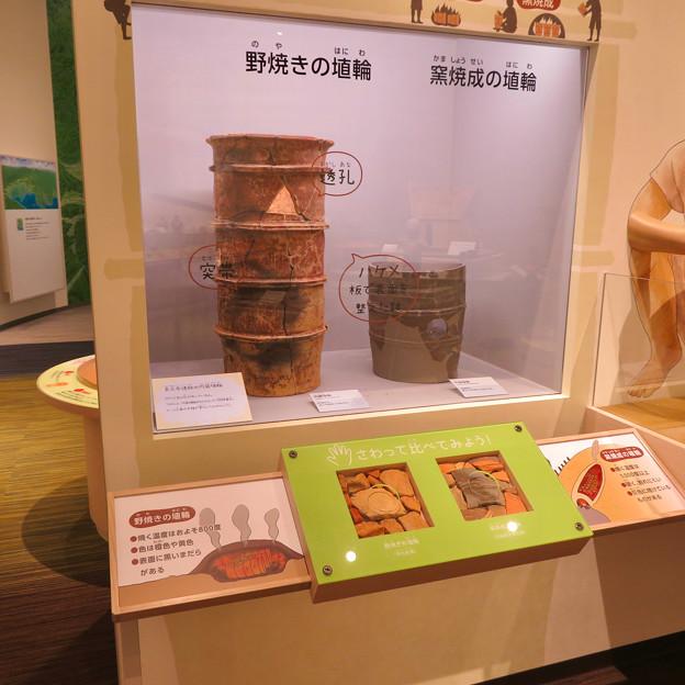 しだみ古墳群ミュージアム「SHIDAMU(しだみゅー)」展示室 No- 54:野焼きの埴輪と窯焼成の埴輪