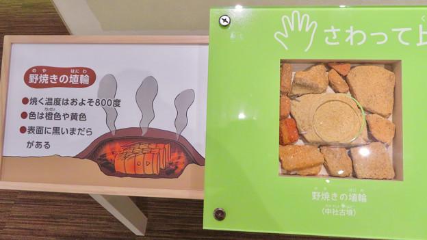 しだみ古墳群ミュージアム「SHIDAMU(しだみゅー)」展示室 No- 55:野焼きの埴輪の説明と触れるかけら