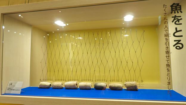 しだみ古墳群ミュージアム「SHIDAMU(しだみゅー)」展示室 No- 75:漁網の先に付けられた重り「土垂」