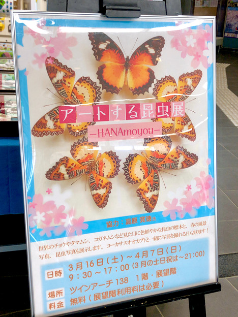 ツインアーチ138:アートする昆虫展 No - 3
