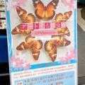 Photos: ツインアーチ138:アートする昆虫展 No - 3