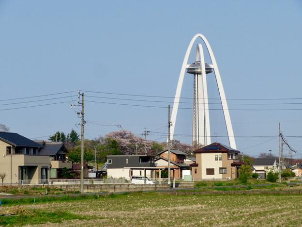 桜とツインアーチ138 - 6
