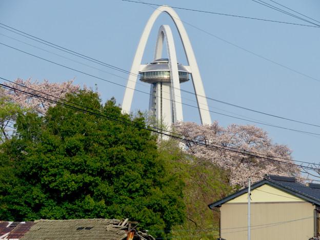 桜とツインアーチ138 - 7