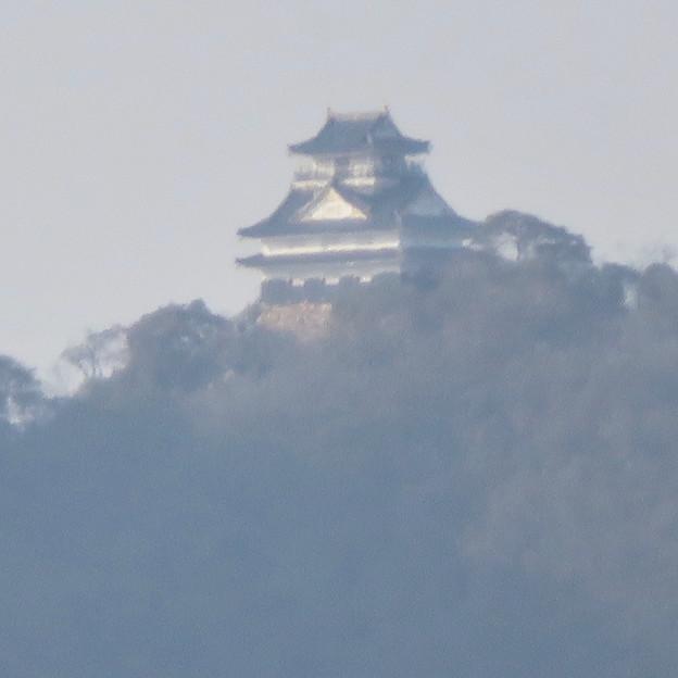 木曽川沿いから見えた岐阜城・金華山 - 4