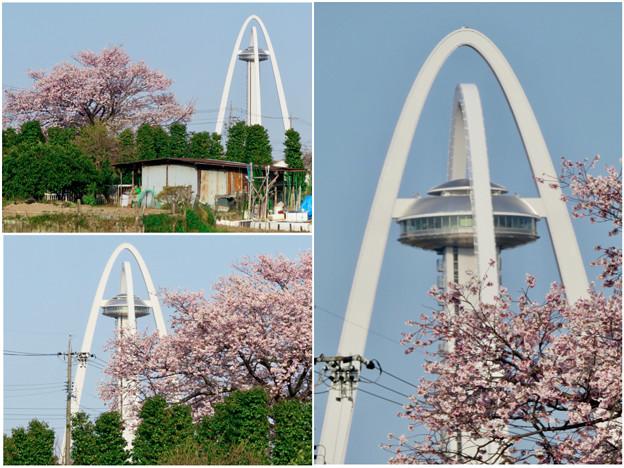 桜とツインアーチ138 - 8