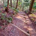 Photos: 東谷山:中社古墳と南社古墳の間の急な階段 - 1
