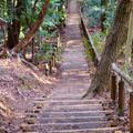 Photos: 東谷山:中社古墳と南社古墳の間の急な階段 - 2
