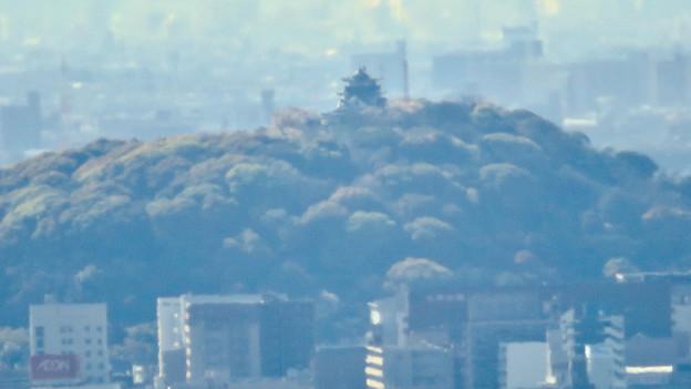 尾張戸神社の展望台から見た景色 - 13:小牧山と小牧城