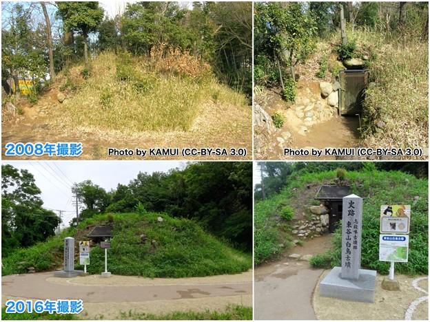 Photos: 2008年と2016年の東谷山白鳥古墳 - 2