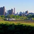 生目橋から見えた王子製紙の煙突越しの名駅ビル群 - 2