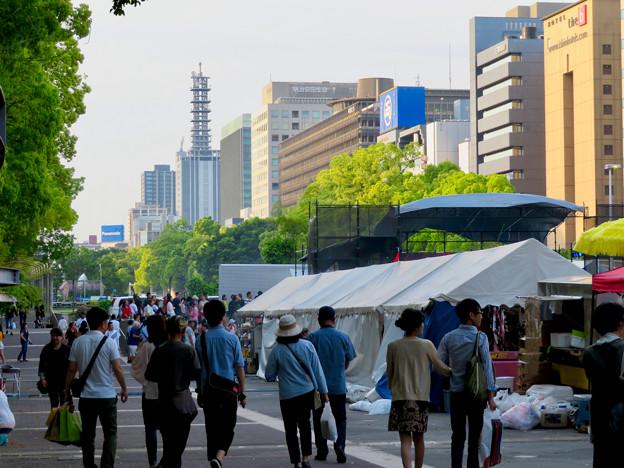 名古屋ラテンアメリカフェスティバル 2019 No - 15