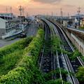 Photos: 小牧原駅周辺の撤去されず残されてる桃花台線の高架(2019年5月) - 4
