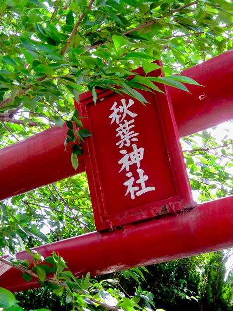 犬山駅前にある秋葉神社 - 5