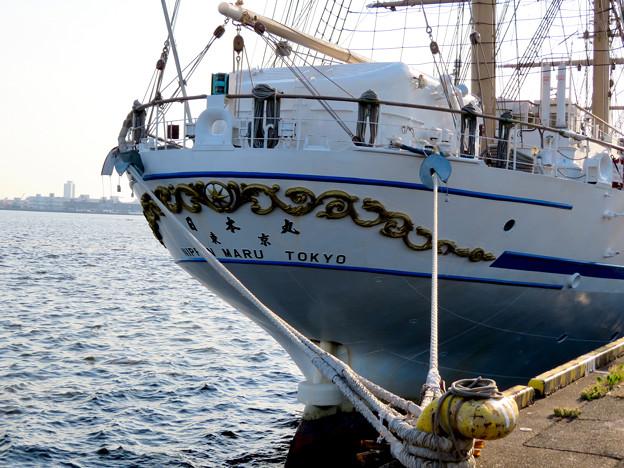ガーデンふ頭に停泊して帆船「日本丸」 - 20