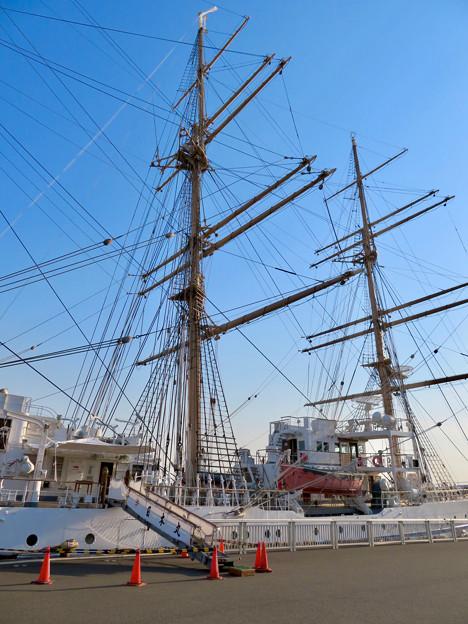 ガーデンふ頭に停泊して帆船「日本丸」 - 23