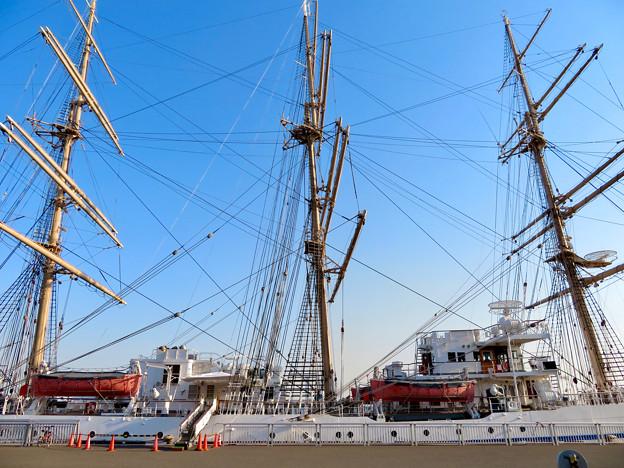 ガーデンふ頭に停泊して帆船「日本丸」 - 25
