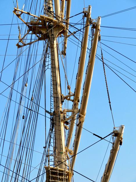 ガーデンふ頭に停泊して帆船「日本丸」 - 26