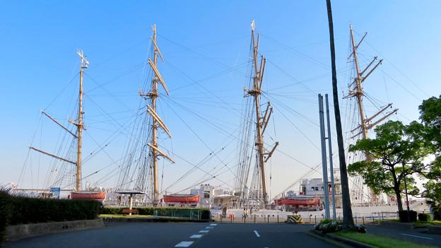 ガーデンふ頭に停泊して帆船「日本丸」 - 28