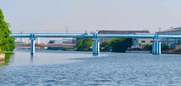 クルーズ名古屋(2019年5月)No - 59