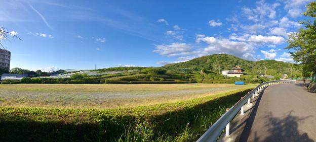 東谷山フルーツパーク北門前から見た東谷山とブドウ園(パノラマ)