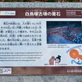 Photos: 志段味古墳群 白鳥塚古墳 No - 50:葺石(ふきいし)の説明