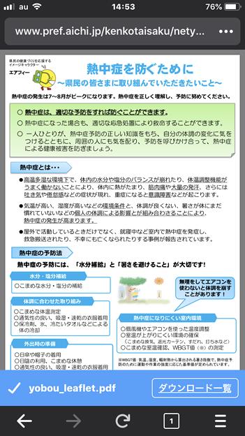 iOS版Firefox 17.3 No - 3:PDFをダウンロード(ダウンロード完了)