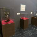 Photos: 名古屋市科学館「絶滅動物研究所」展 No - 24