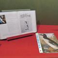Photos: 名古屋市科学館「絶滅動物研究所」展 No - 34:オオウミガラスが描かれた本