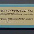 Photos: 名古屋市科学館「絶滅動物研究所」展 No - 41:空を覆うリョコウバトとそれを狩る人たちが描かれた絵の説明