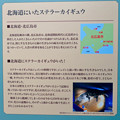 Photos: 名古屋市科学館「絶滅動物研究所」展 No - 51:北海道にいたステラーカイギュウ