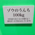 Photos: 名古屋市科学館「絶滅動物研究所」展 No - 135:ゾウのうんちの説明