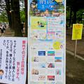 Photos: 鶴舞公園納涼まつり 2019 No - 1:プログラム