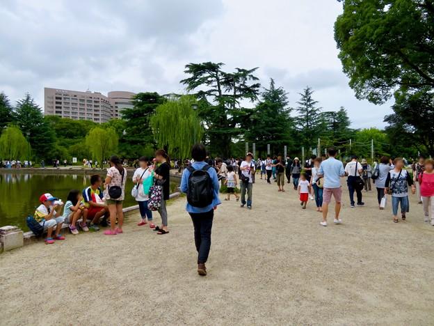 鶴舞公園納涼まつり 2019 No - 5:祭りよりポケモンGoの人たちがいっぱい!?