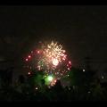 大池緑地公園から見た春日井市民納涼まつりの花火 - 25