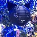 ちょっと可愛らしかった松坂屋名古屋店の猫型提灯 - 1