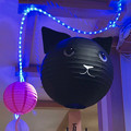 ちょっと可愛らしかった松坂屋名古屋店の猫型提灯 - 4