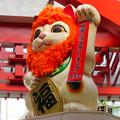 Photos: 大須商店街:映画「ライオンキング」PRのためライオンになってた招き猫広場の招き猫 - 8