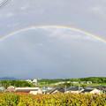 Photos: 2重の虹が架かった、雨上がりの日(2019年8月14日) - 10:パノラマ