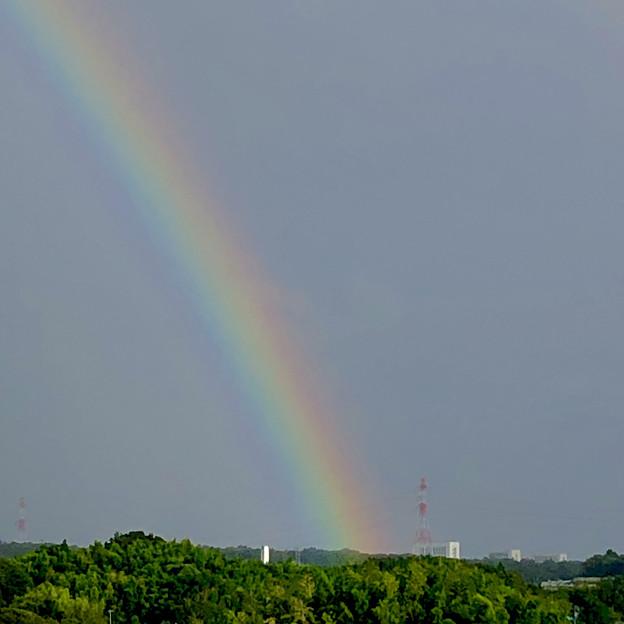 2重の虹が架かった、雨上がりの日(2019年8月14日) - 16
